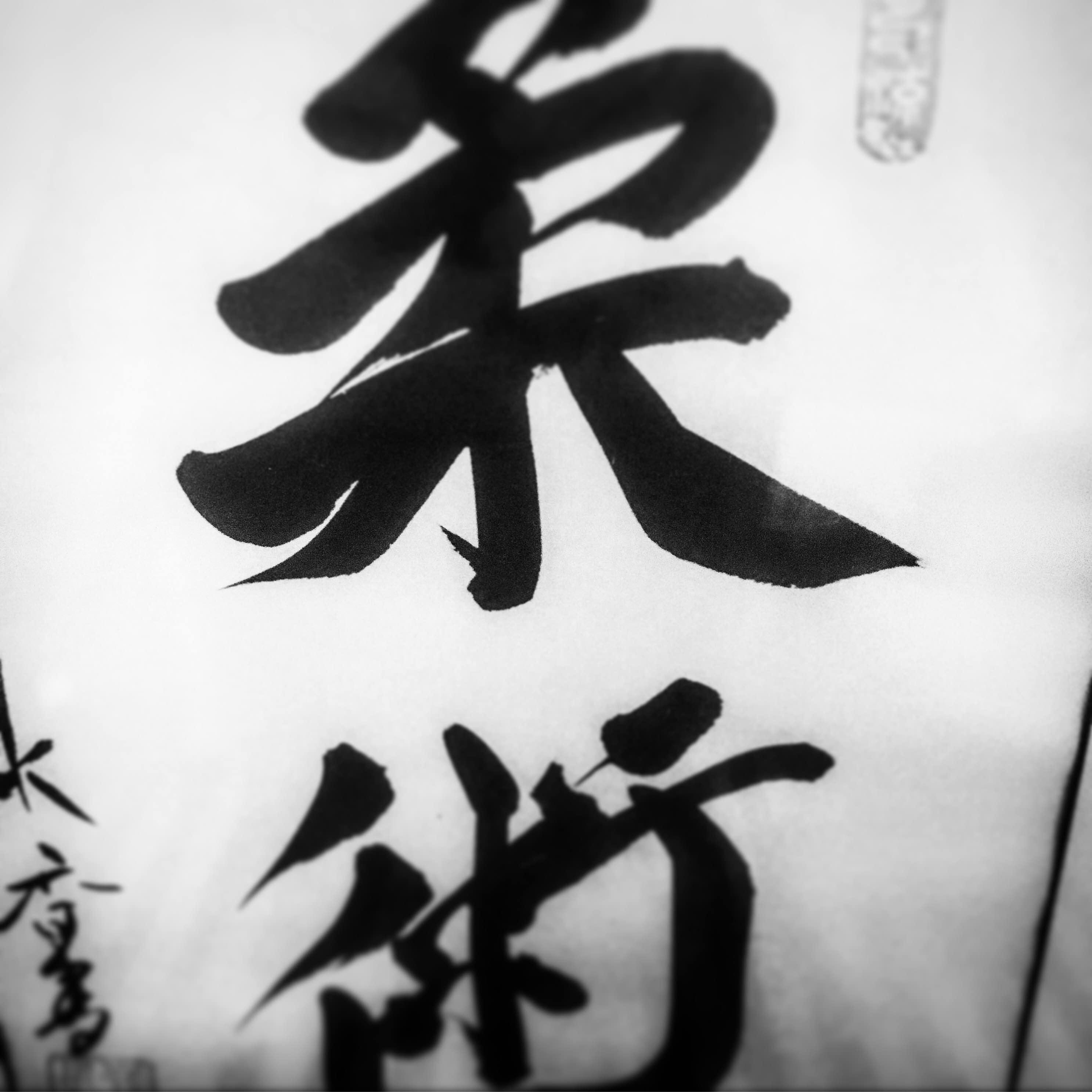 Sentō Ryu Ju Jutsu